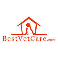 Use your Best Vet Care coupons code or promo code at bestvetcare.com